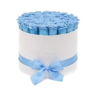 37 синих роз в шляпной коробке